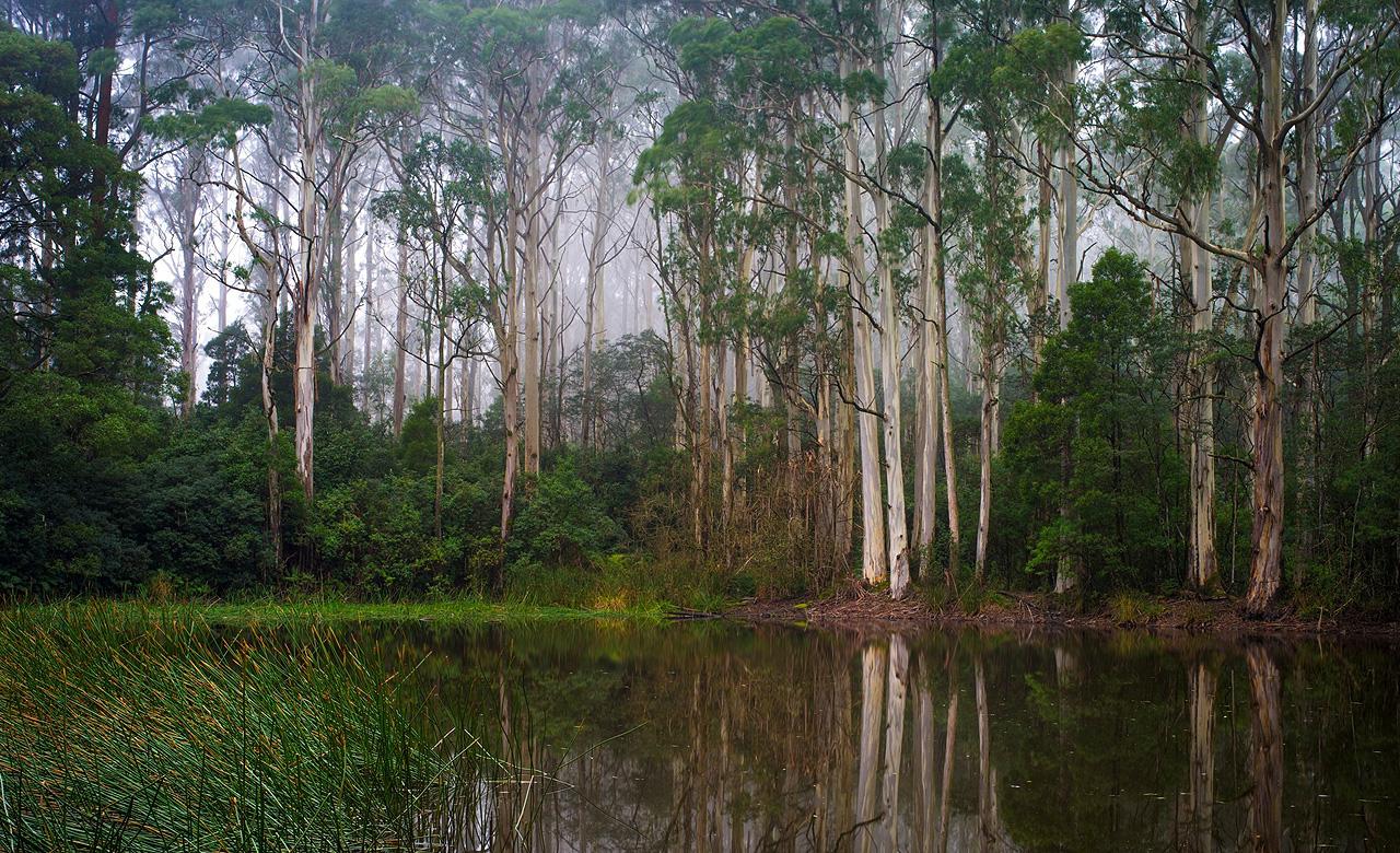 Mount Macedon, Daylesford and Macedon Ranges, Victoria, Australia