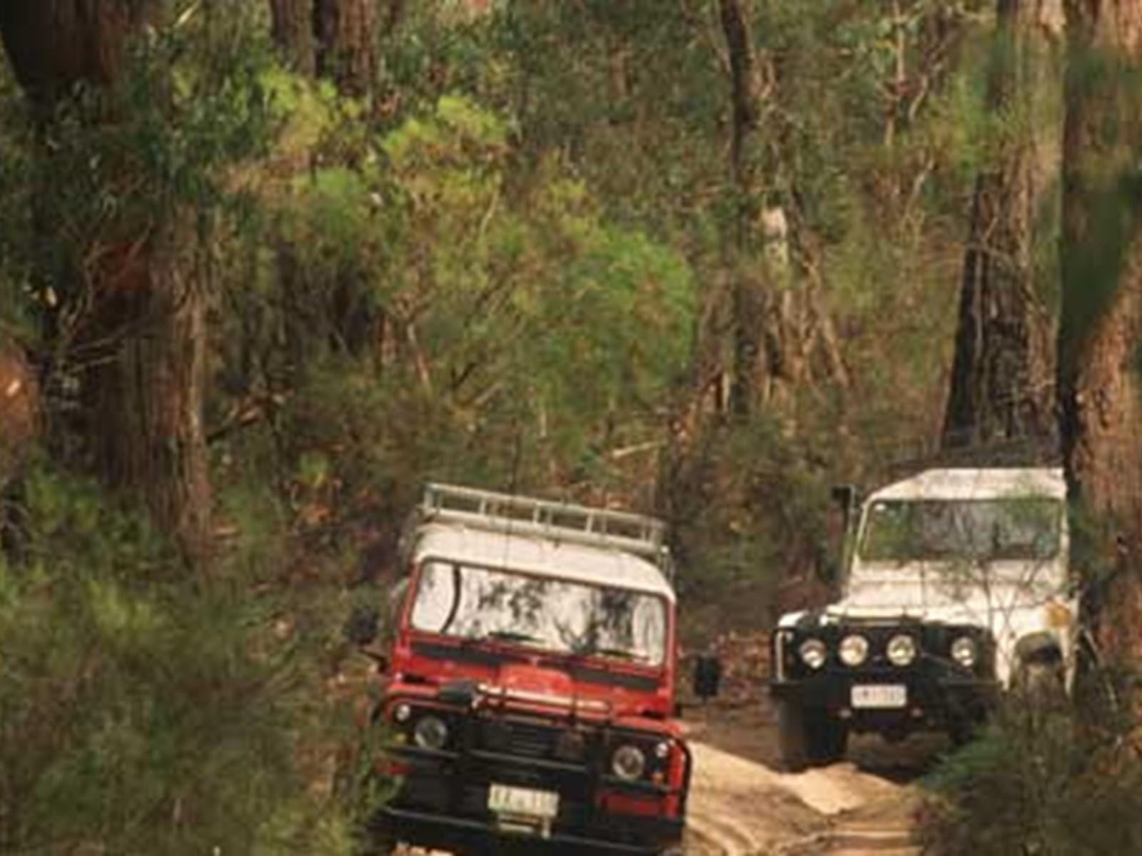 Four-wheel driving, Gippsland, Victoria, Australia