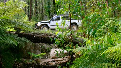 Four-wheel driving Alpine National Park-Wonnangatta Valley, Gippsland, Victoria, Australia