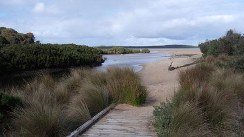 Screw Creek Nature Walk, Gippsland, Victoria, Australia
