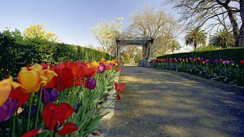 Horsham Botanic Gardens, Grampians, Victoria, Australia