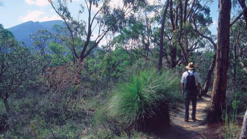 The Piccaninny, Grampians, Victoria, Australia