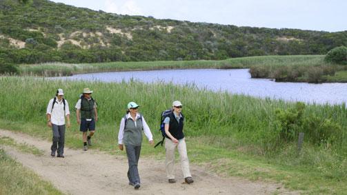 Aire River, Great Ocean Walk, Victoria, Australia