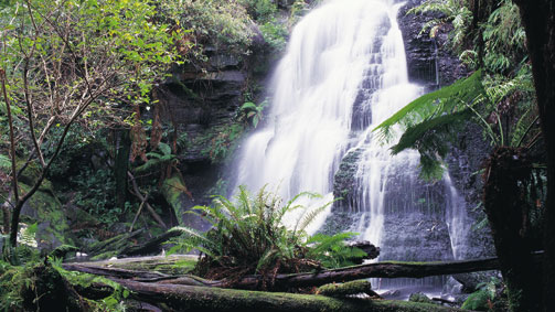 Henderson Falls, Great Ocean Road, Victoria, Australia