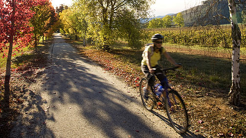 Cycling at Boyntons Feathertop Winery, High Country, Victoria, Australia