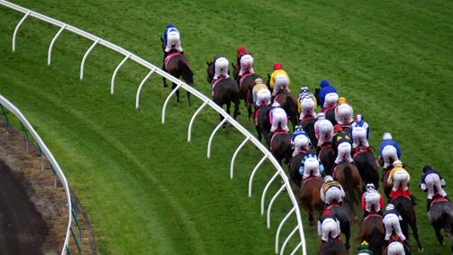 Horse racing at Flemington, Melbourne, Victoria, Australia