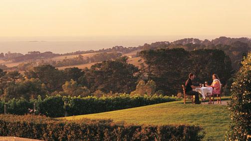 Max's at Red Hill Estate, Mornington Peninsula, Victoria, Australia