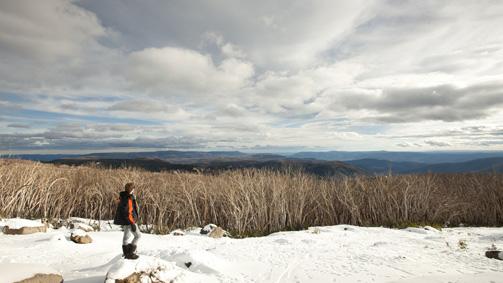 Lake Mountain, Yarra Valley and Dandenong Ranges, Victoria, Australia