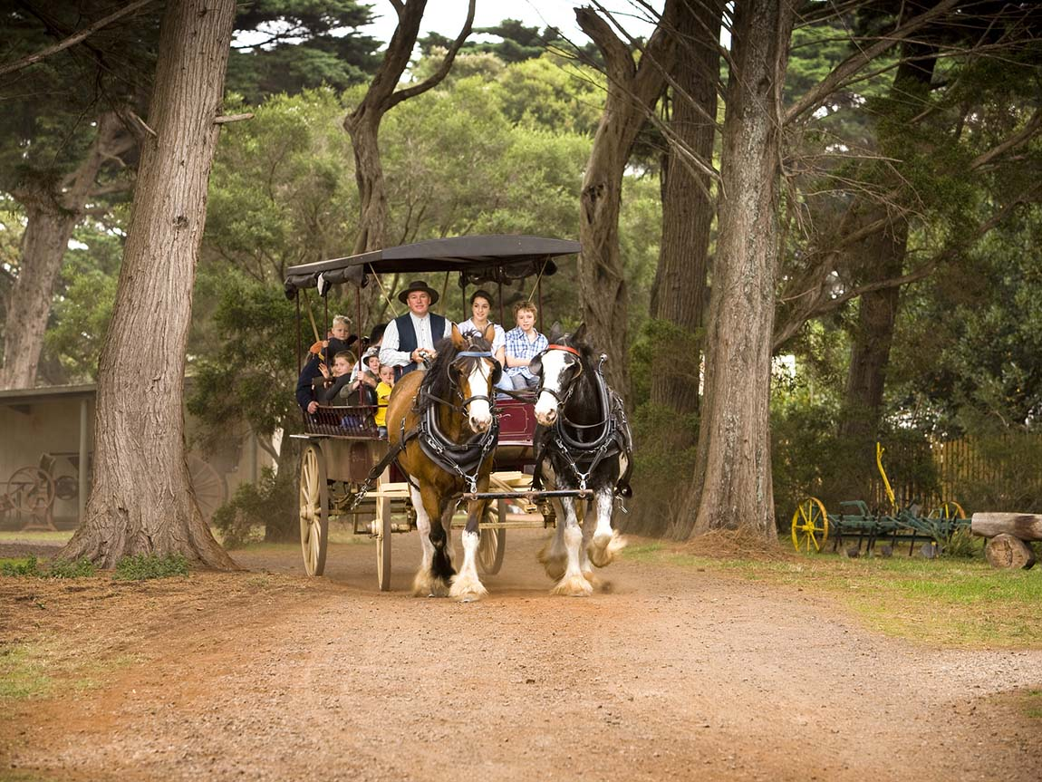 Wagon rides at Churchill Island, Phillip Island, Victoria, Australia