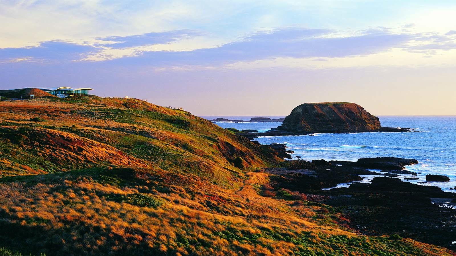 The Nobbies, Phillip Island, Victoria, Australia