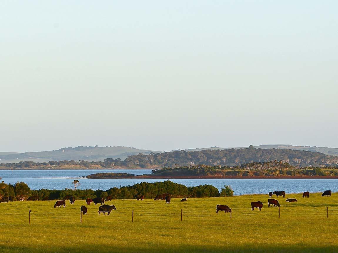 Phillip Island vista, Victoria, Australia