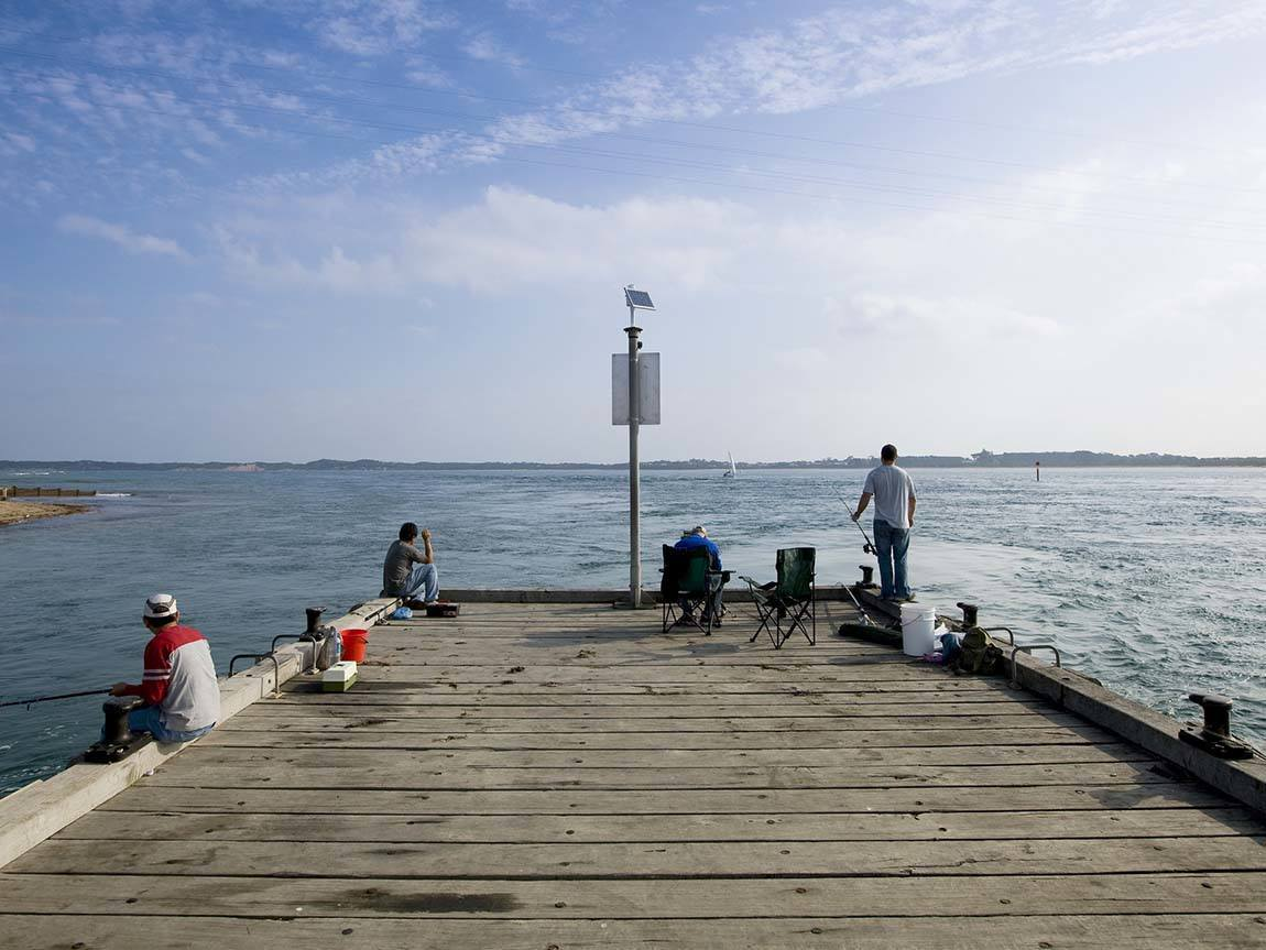 Where To Catch Fish In Phillip Island