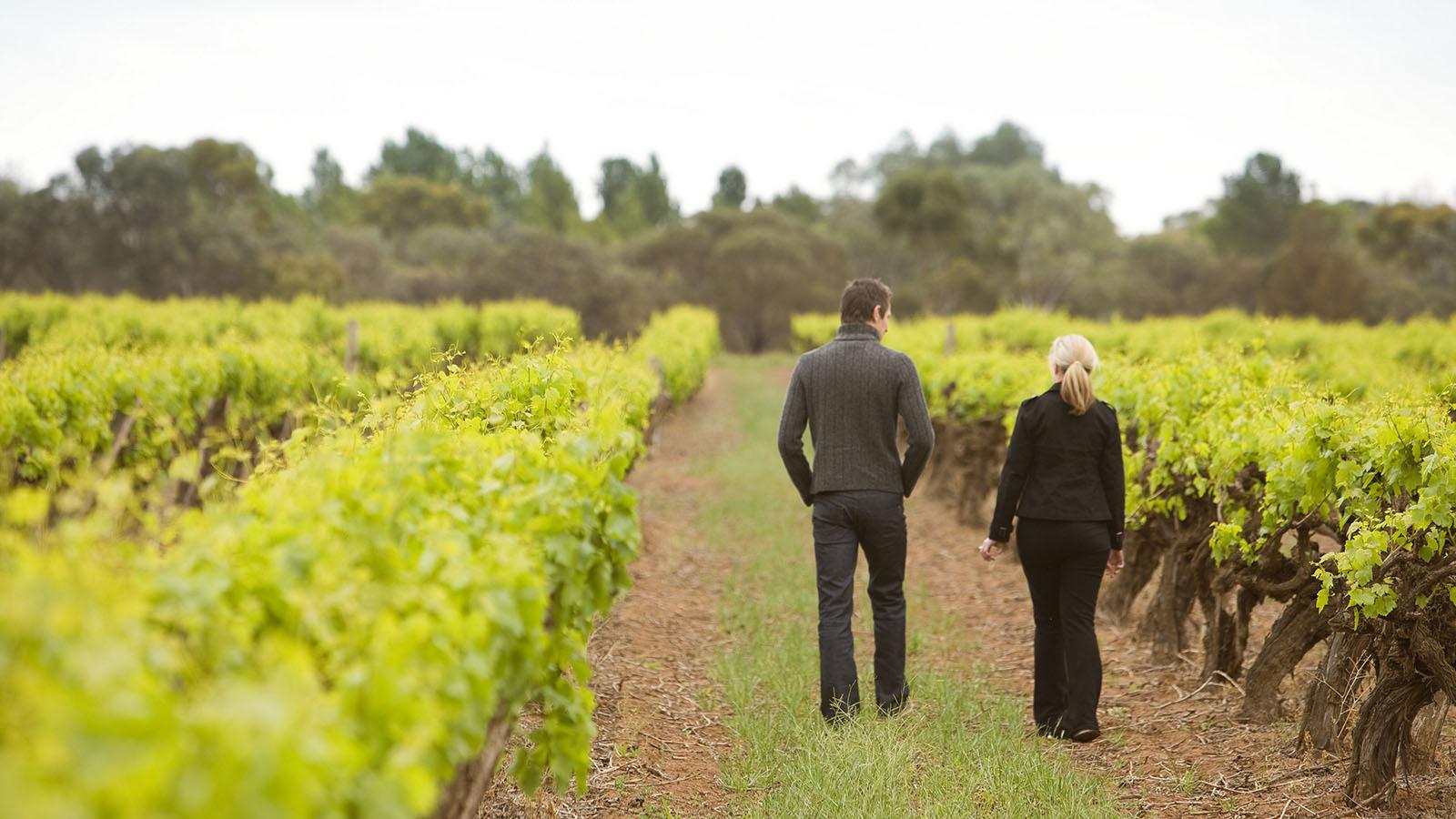 Andrew Peace Wines, The Murray, Victoria, Australia