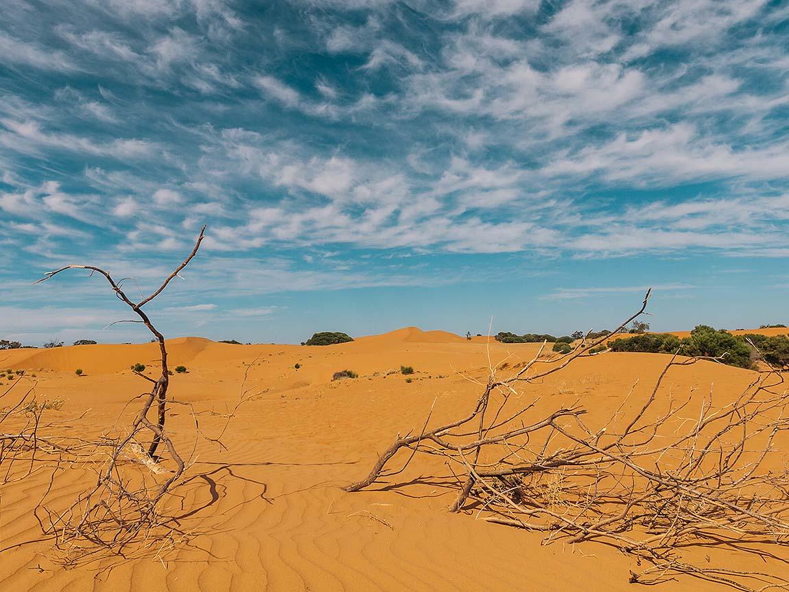 Perry Sandhills, The Murray, Victoria, Australia. Image: Roberto Seba