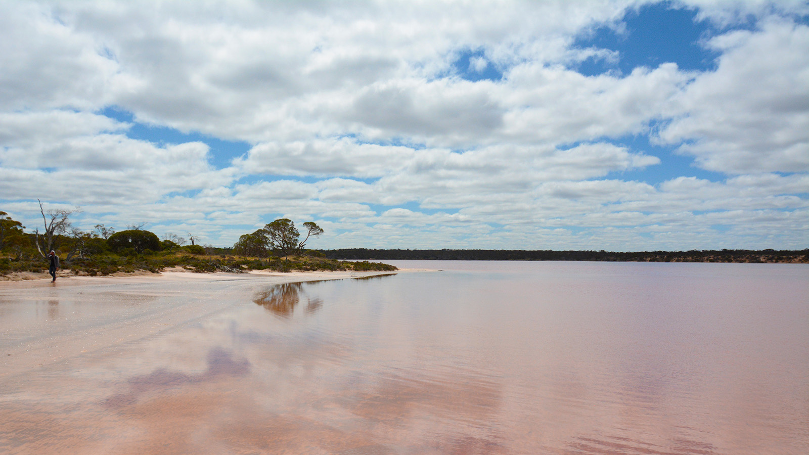 Pink Lakes, The Murray, Victoria, Australia