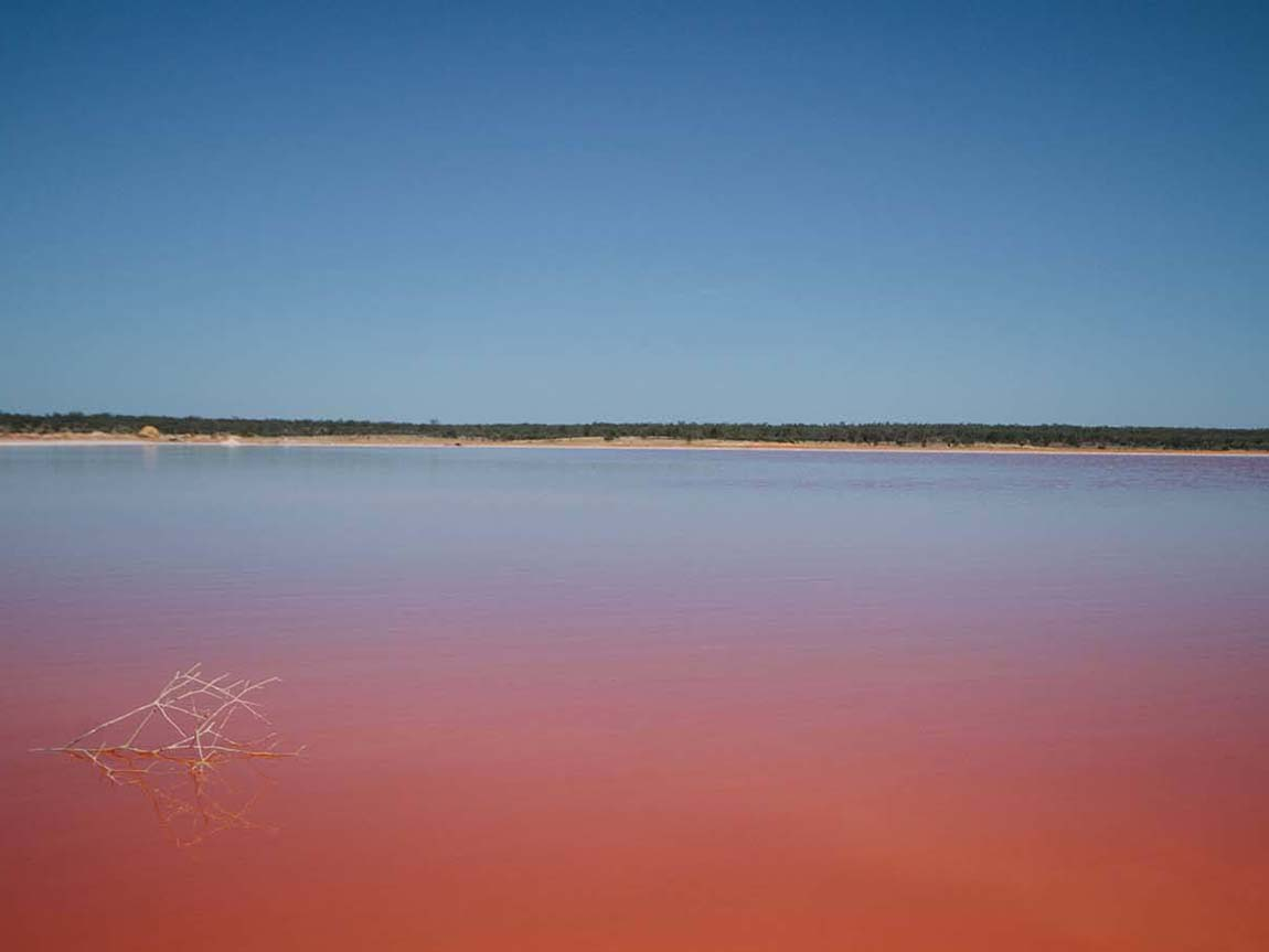 Pink Lakes, Murray-Sunset National Park, The Murray, Victoria, Australia