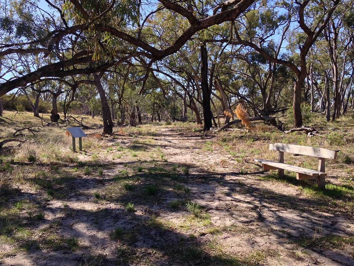 Tyakil Nature Walk, The Murray, Victoria, Australia