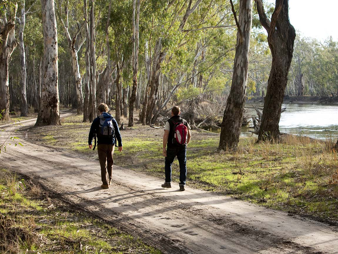 Walking in Barmah State Park, The Murray, Victoria. Australia