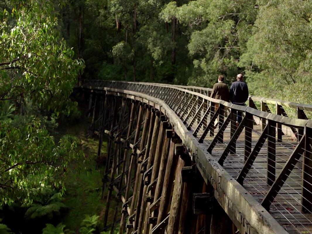 Wander Victoria. Noojee Trestle Bridge, Noojee, Gippsland, Victoria, AustraliaWander Victoria. Noojee Trestle Bridge, Noojee, Gippsland, Victoria, Australia