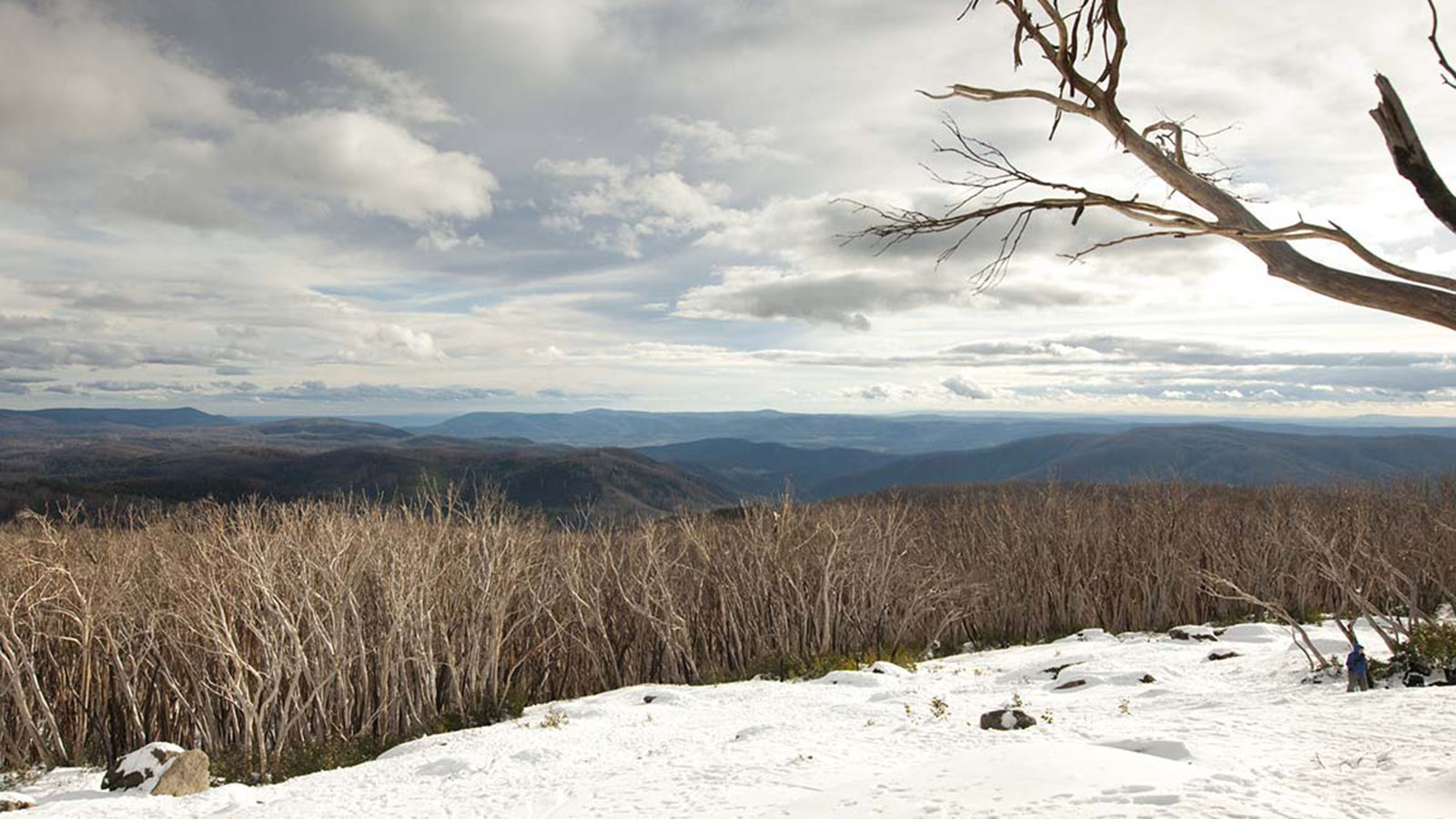 Lake Mountain, Yarra Valley & Dandenong Ranges, Victoria, Australia