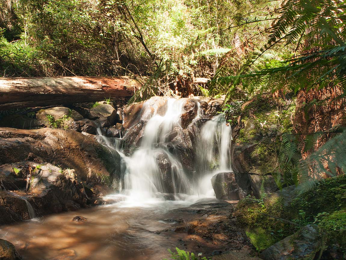 Olinda Falls, Yarra Valley and Dandenong Ranges, Victoria, Australia