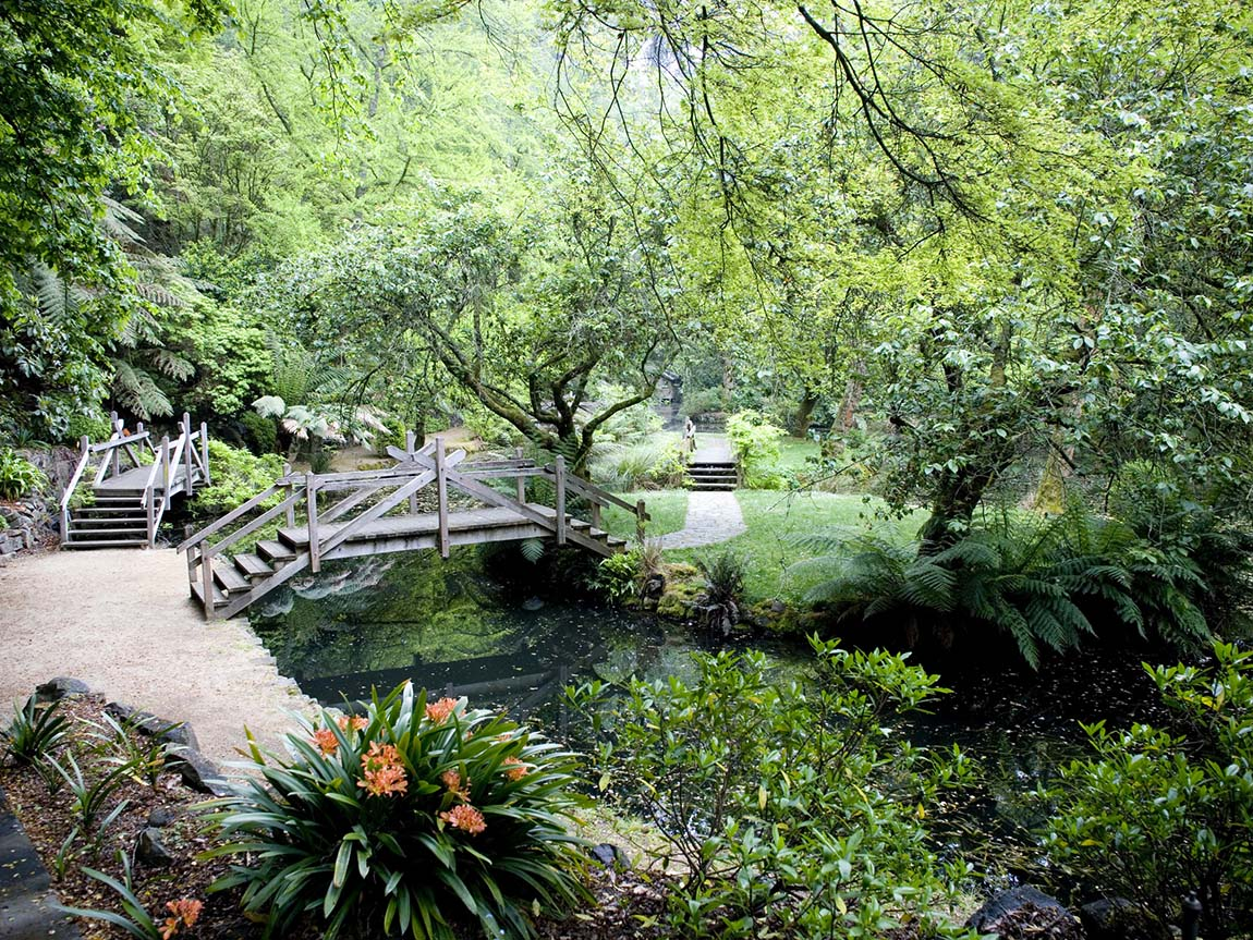 Alfred Nicholas Gardens, Sherbrooke,  Yarra Valley and Dandenong Ranges, Victoria, Australia