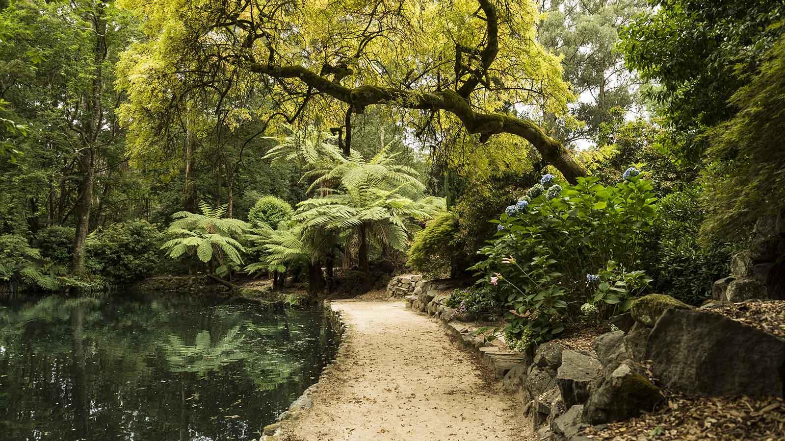 Alfred Nicholas Gardens, Yarra Valley & the Dandenong Ranges, Victoria, Australia