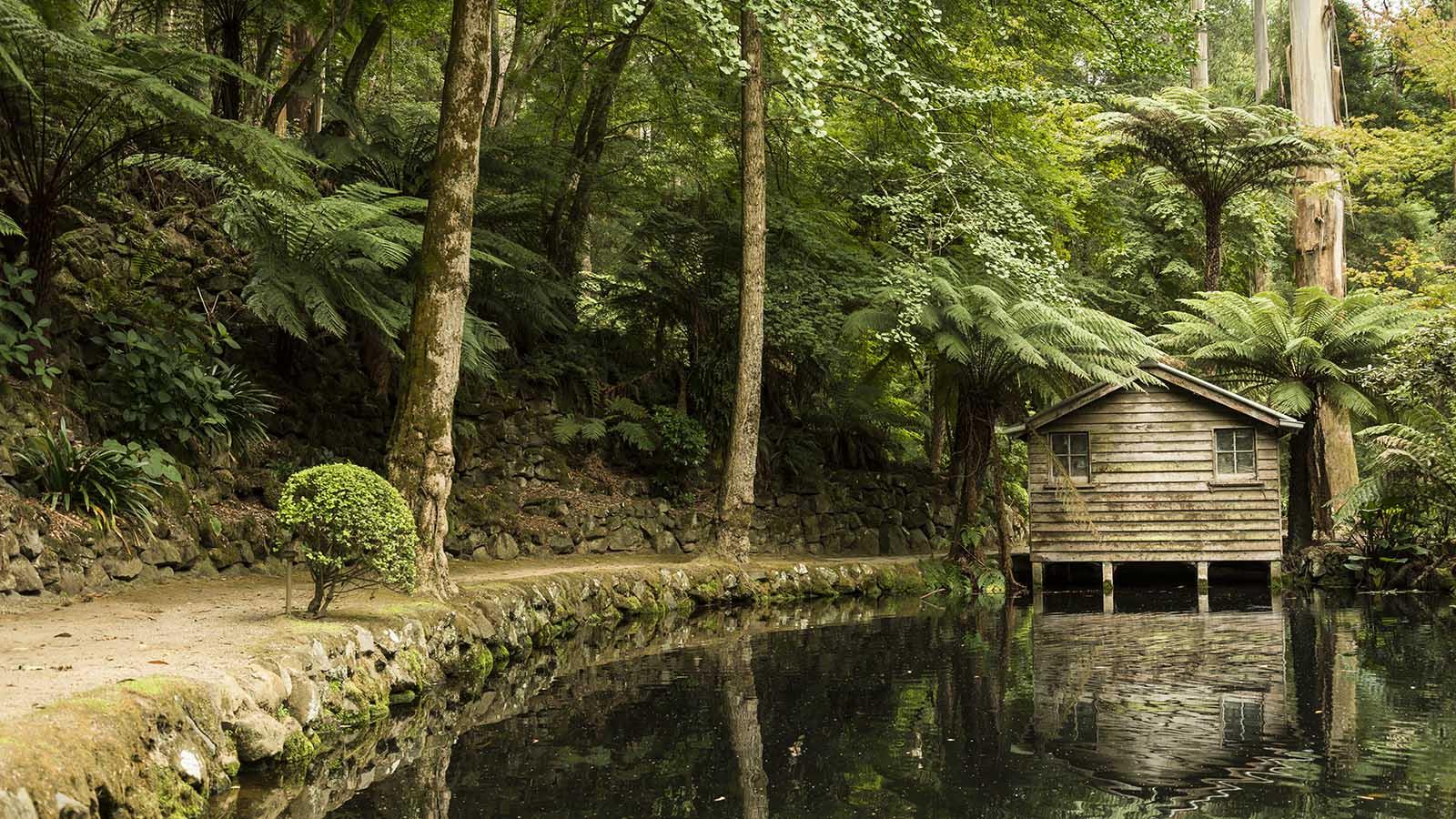 Alfred Nicholas Gardens, Yarra Valley & Dandenong Ranges, Victoria, Australia