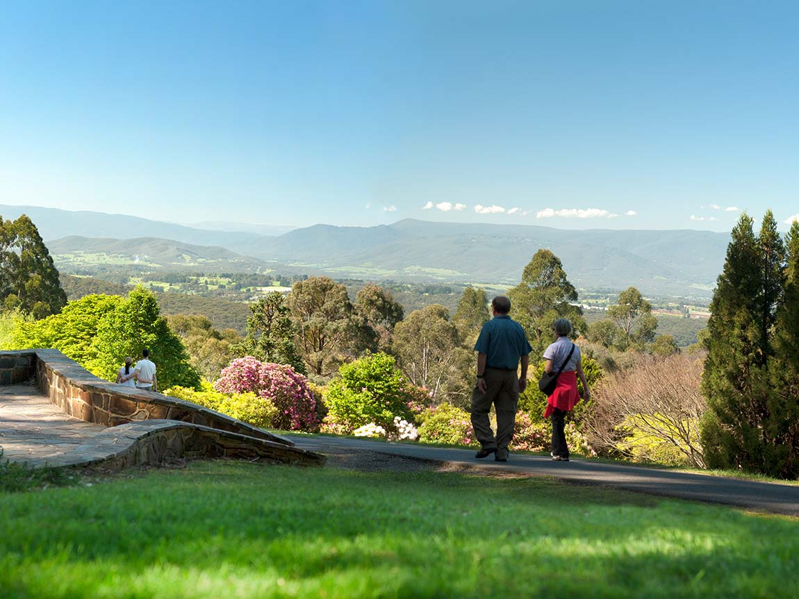 National Rhododendron Gardens, Yarra Valley and Dandenong Ranges, Victoria, Australia