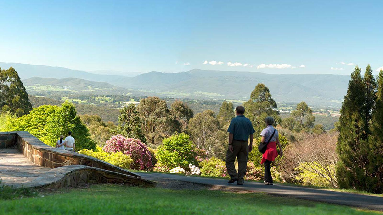 National Rhododendron Gardens, Yarr Valley & Dandenong Ranges, Victoria, Australia