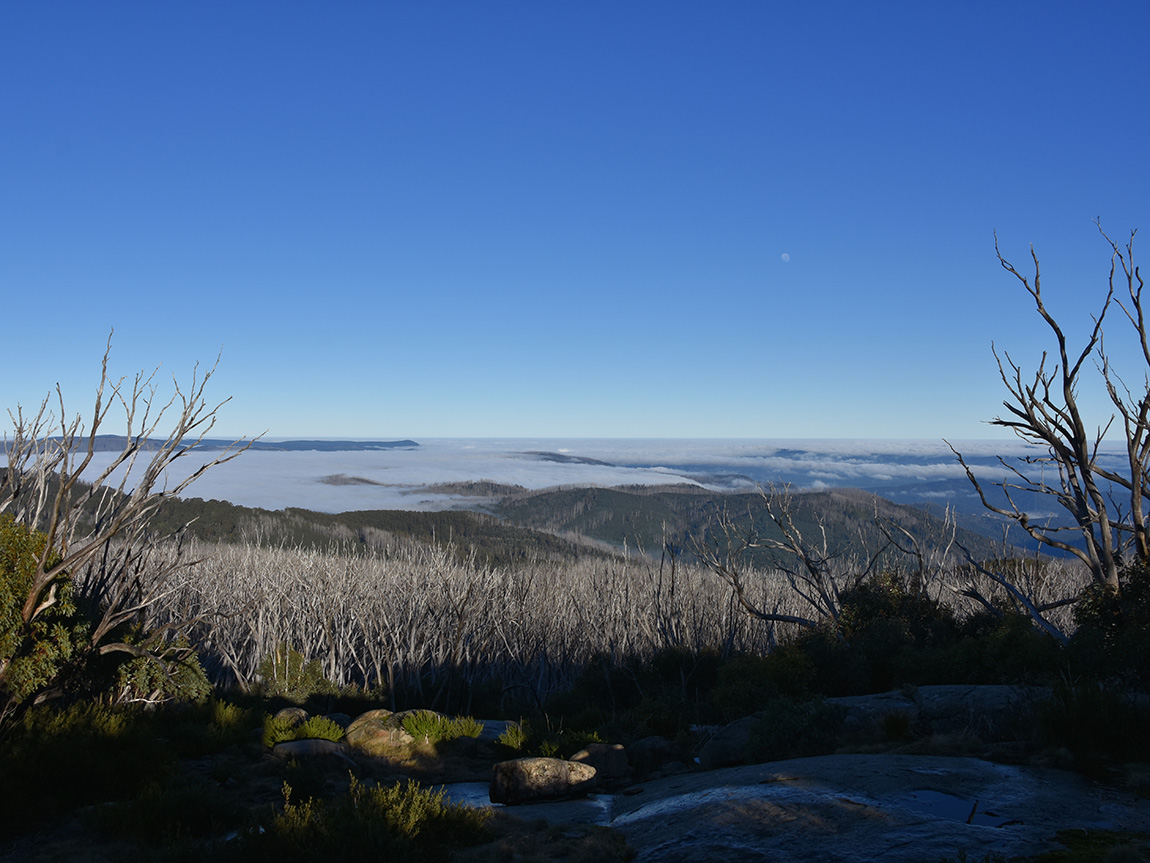Lake Mountain Summit Walk, Yarra Valley & the Dandenong Ranges, Victoria, Australia