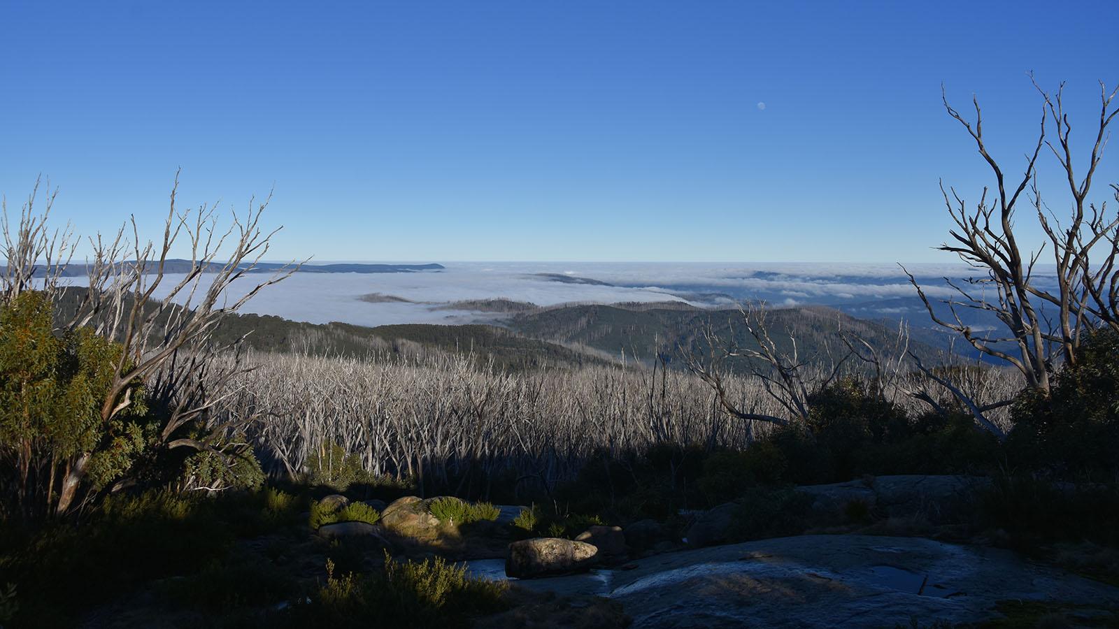 Lake Mountain Summit Walk, Yarra Valley & the Dandenong Ranges, Victoria, Australia