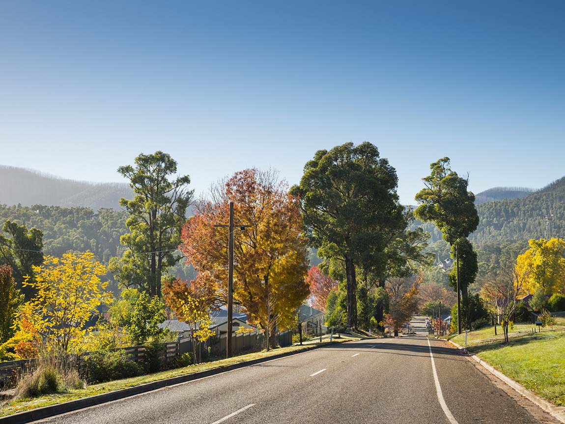 Road to Marysville, Yarra Valley and Dandenong Ranges, Victoria, Australia